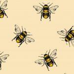 Grupa 1 – Pszczółki